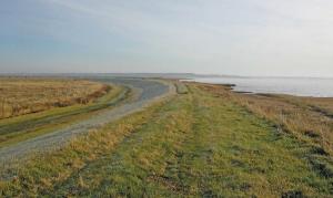 A stretch f dyke along the Bay of Fundy